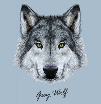 Sticker Digitale Vektor-Illustration Porträt eines Wolfs.