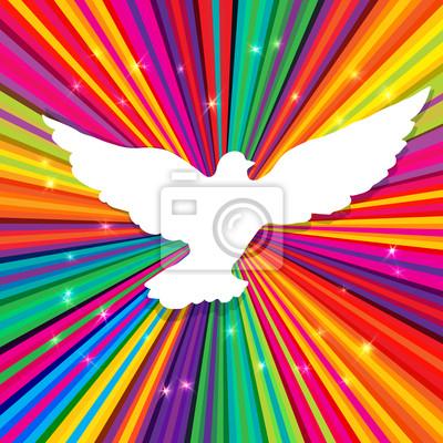 Dove Silhouette auf psychedelischen farbigen abstrakten Hintergrund. Vect