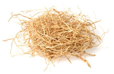 Sticker dried vetiver roots isolated on the white background