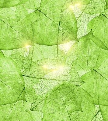 Sticker dunkelgrünes Blatt Hintergrund