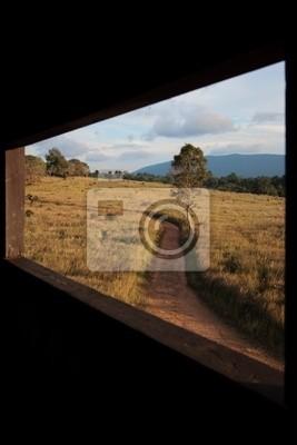 durch Fenster