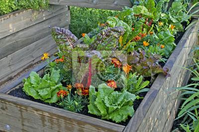 Ein Hochbeet Aus Gemuse Und Blumen In Einem Stadtischen Garten