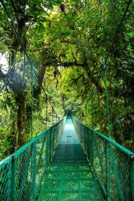 Sticker Eine Brücke im Regenwald in Costa Rica