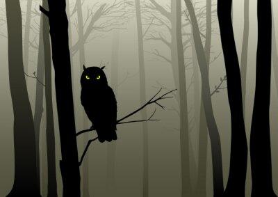 Sticker Eule Im Nebelhaften Wald
