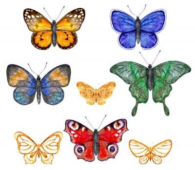 Sticker Farbige Schmetterlinge eingestellt