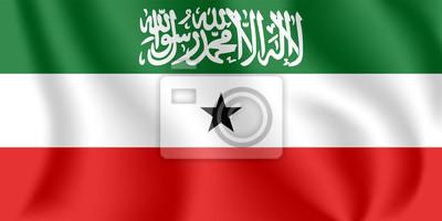 Flagge von Somaliland. Realistische wehende Flagge der Republik Somaliland. Strukturierte flüssige Flagge von Somaliland.