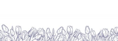 Sticker Flat horizontal banner template with outline tulips on white background