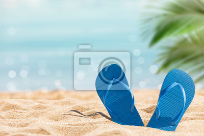 Sticker flip flops on the sunny tropical beach with palm tree