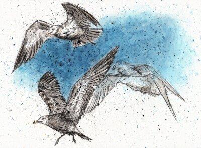 Sticker Flock von Möwen