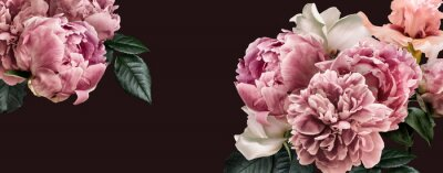 Sticker Floral banner, flower cover or header with vintage bouquets. Pink peonies, white roses isolated on black background.