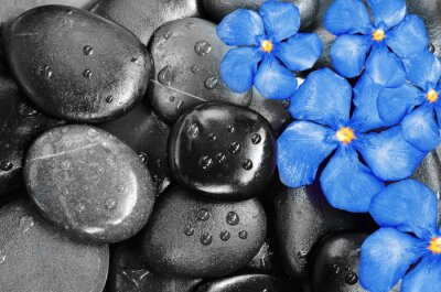 Sticker Flowers and stones