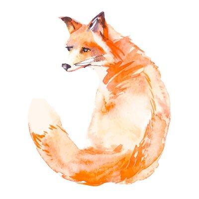 Sticker Fox isoliert auf weißem Hintergrund. Aquarell. .