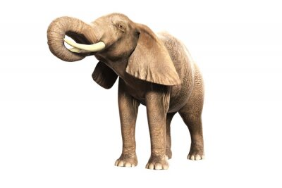 Sticker Freigestellter Elefant mit erhobenem Rüssel (gerendertes Bild)