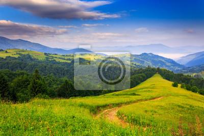 Frische einem Sommermorgen in den Bergen