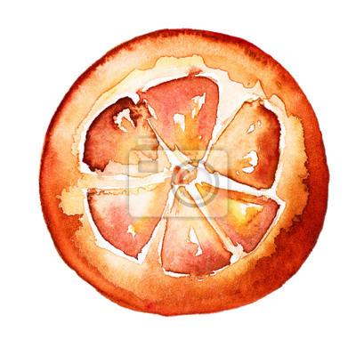 Frische geschmackvolle geschnittene orange Hand gezeichnete Aquarell-Illustration. Isoliert Weißer Hintergrund.