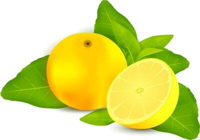 Sticker Frische Zitronen mit Blättern weißen Hintergrund