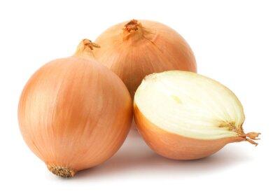 Sticker Frische Zwiebeln Zwiebeln auf einem weißen Hintergrund