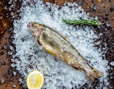 Sticker frischer Fisch