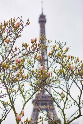 Sticker Frühling in Paris