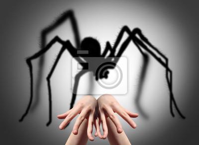 Furcht, Spinne Schatten an der Wand