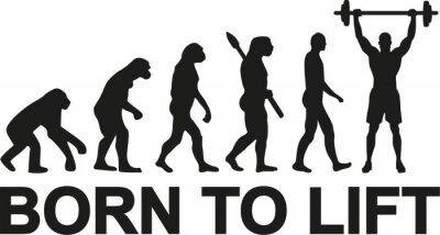 Sticker Geboren, Gewichtheben Evolution zu heben