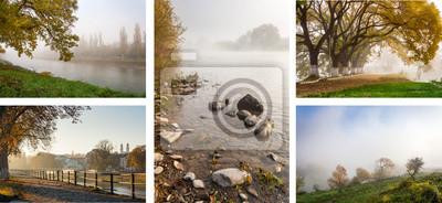 gelb Herbst Damm mit Bäumen und Nebel