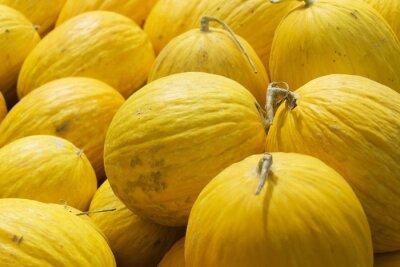 Gelbe Melonen Hintergrund