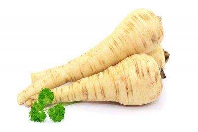 Sticker Gemüse Pastinake
