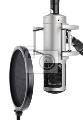 Sticker Gesangsmikrofon mit Pop-Schutz