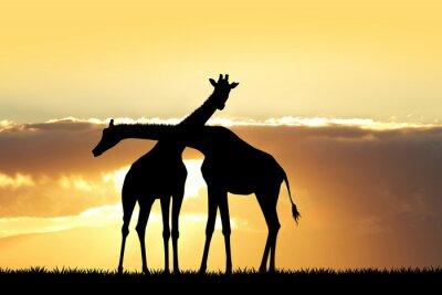 Sticker Giraffe Silhouette bei Sonnenuntergang