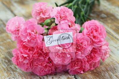 Good Luck Card With Pink Carnation Flowers Notebook Sticker