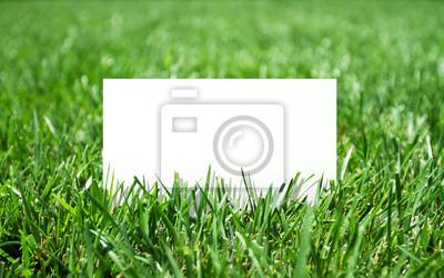 Gras und Papier