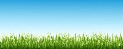 Sticker Grass und der Himmel
