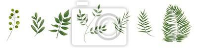 Sticker grüne Blätter im Stil von Aquarell