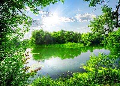 Grüne Frühjahr auf dem Fluss