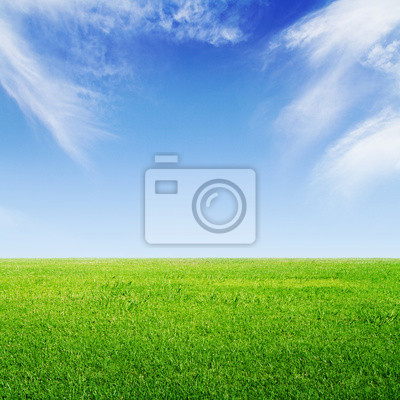 grünem Gras und Himmel