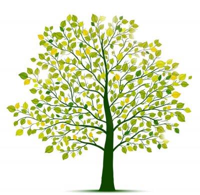 Sticker Grünen Baum isoliert