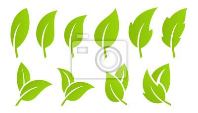 Sticker Grünes Blatt-Set. Öko