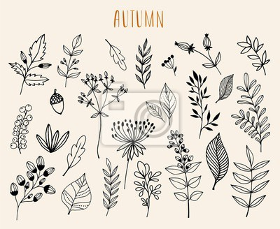 Sticker Hand drawn autumn  collection with seasonal plants and leaves