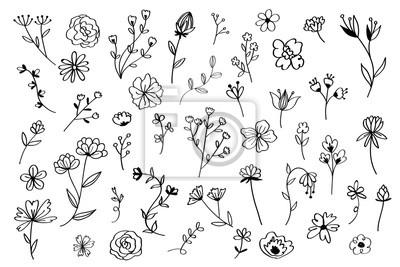 Sticker Hand drawn flower set