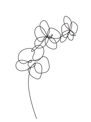Sticker Hand drawn orchid flowers. Black and white vector illustration
