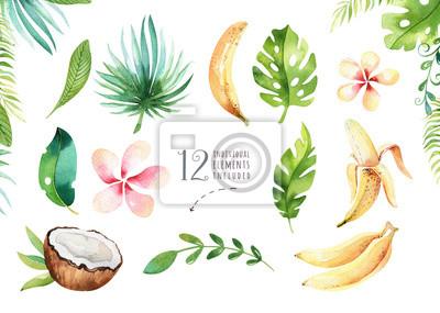 Hand gezeichnet Aquarell tropischen Pflanzen gesetzt. Exotische Palmblätter, Dschungelbaum, Brasilien tropische Botanik Elemente und Blumen. Perfekt für Stoffdesign. Aloha gesetzt