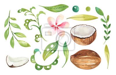 Hand gezeichnet Aquarell tropischen Pflanzen gesetzt. Exotische Palmblätter, Dschungelbaum, Brasilien tropische Botanik Elemente und Blumen. Perfekt für Stoffdesign. Aloha-Set,