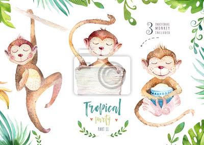 Hand gezeichnet Aquarell tropischen Pflanzen gesetzt und Affen. Exotische Palmblätter, Dschungelbaum, Brasilien tropische Botanik Elemente und Affen. Perfekt für Stoffdesign. Aloha-Set,