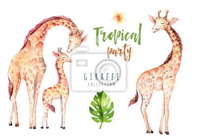 Hand gezeichnet Aquarell tropischen Pflanzen gesetzt und Giraffe. Exotische Palmblätter, Dschungelbaum, Brasilien tropische Botanik Elemente und Affen. Perfekt für Stoffdesign. Aloha gesetzt