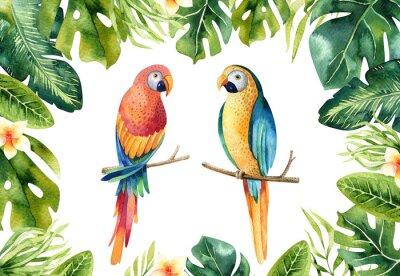 Hand gezeichnet Aquarell tropischen Pflanzen gesetzt und Papagei.