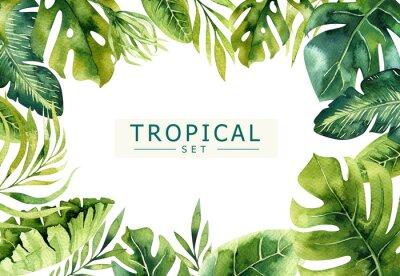 Hand gezeichnet Aquarell tropischen Pflanzen Hintergrund. Exotische Palmblätter, Dschungelbaum, brasilianische Bord-Elemente. Perfekt für Stoffdesign.