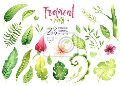 Hand gezeichnete tropische Anlagen des Aquarells eingestellt. Exotische Palmblätter, Dschungelbaum, tropische Botanikelemente und Blumen Brasiliens. Perfekt für Stoffdesign. Aloha-Set