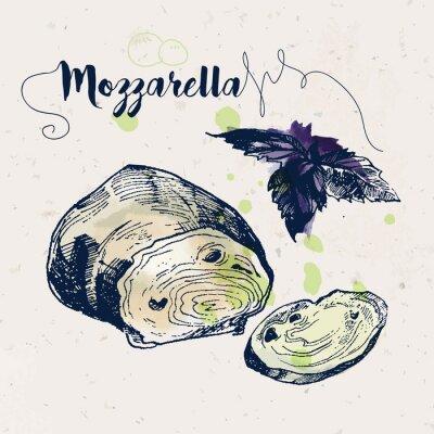 Sticker Hand gezeichneter Mozzarellakäse und Basilikumblätter