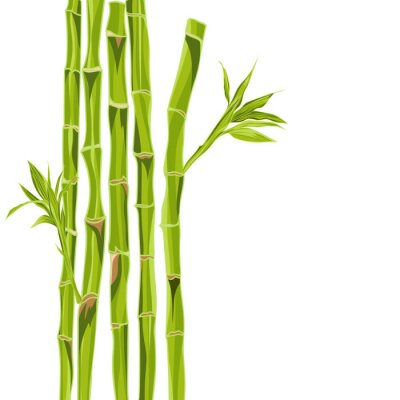 Sticker Handgezeichneten grünen Bambus bacground mit Platz für Text